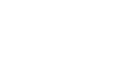 Lexus Security Management Ltd